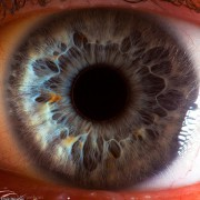 eye_closeup